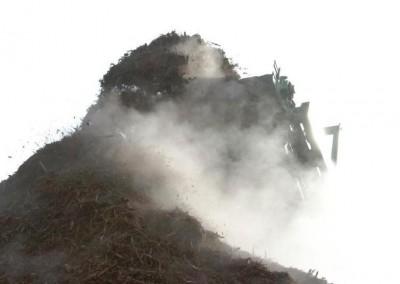 Husky_biomass2